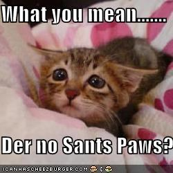 What you mean.......  Der no Sants Paws?!?!