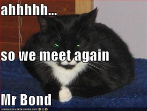 ahhhhh... so we meet again Mr Bond