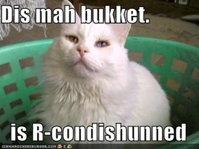 Dis mah bukket.  is R-condishunned