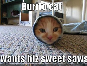 Burito cat  wants hiz sweet saws