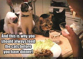 And this is why you should always feed the cats before you have dinner!