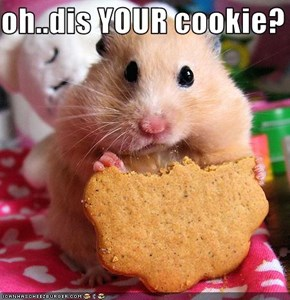 oh..dis YOUR cookie?
