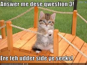 Answer me dese qwestion 3!  Ere teh udder side ye seeks!
