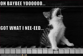 OH BAYBEE YOOOOOO... GOT WHAT I NEE-EED...