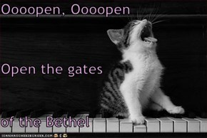 Oooopen, Oooopen Open the gates  of the Bethel