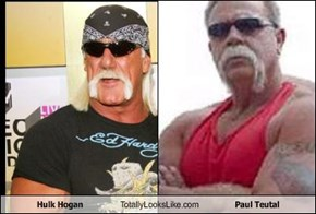 Hulk Hogan Totally Looks Like Paul Teutal