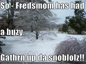 So - Fredsmom has had a buzy. Gathrn up da snoblolz!!
