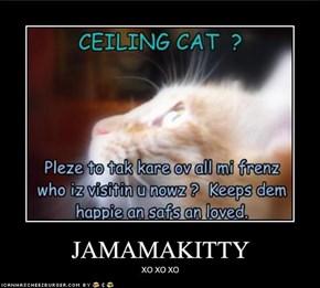 JAMAMAKITTY