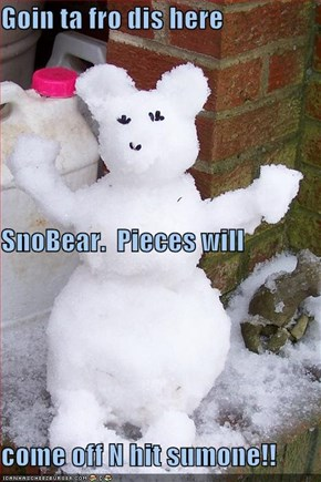 Goin ta fro dis here SnoBear.  Pieces will come off N hit sumone!!