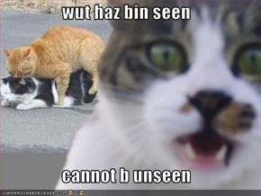 wut haz bin seen   cannot b unseen