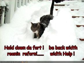 Hold down da fort !    be back width       reenin  reforni......     width Help !