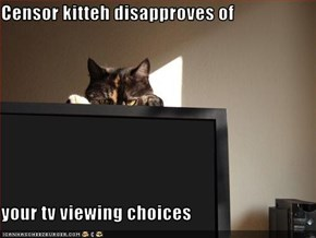 Censor kitteh disapproves of   your tv viewing choices