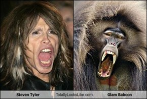 Steven Tyler Totally Looks Like Glam Baboon