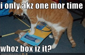 i only akz one mor time  whoz box iz it?