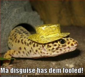 Ma disguise has dem fooled!