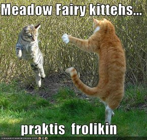 Meadow Fairy kittehs...         praktis  frolikin