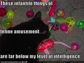These infantile things of feline amusement are far below my level of intelligence.