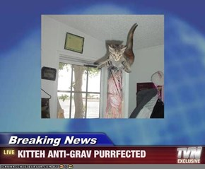 Breaking News - KITTEH ANTI-GRAV PURRFECTED