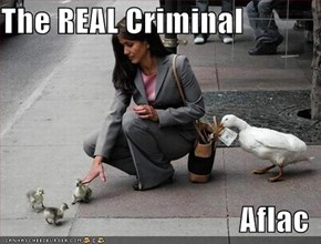 The REAL Criminal   Aflac