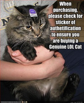 When purchasing, please check for sticker of authetification to ensure you are buying a 