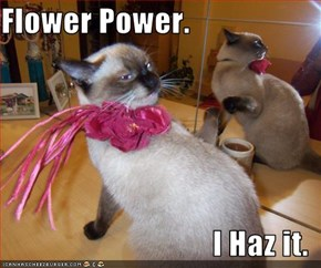 Flower Power.  I Haz it.