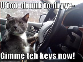 U too  drunk to dryve-  Gimme teh keys now!
