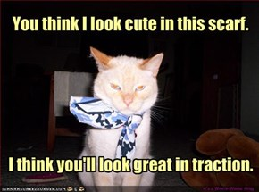 You think I look cute in this scarf.