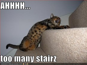 AHHHH...  too many stairz