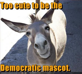 Too cute to be the   Democratic mascot.