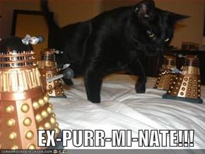 EX-PURR-MI-NATE!!!