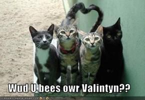 Wud U bees owr Valintyn??