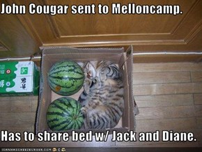 John Cougar sent to Melloncamp.  Has to share bed w/ Jack and Diane.