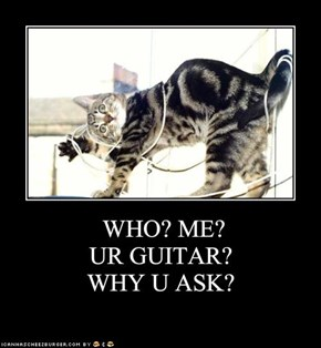 WHO? ME?