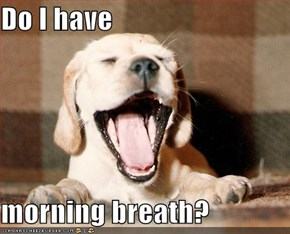 Do I have  morning breath?