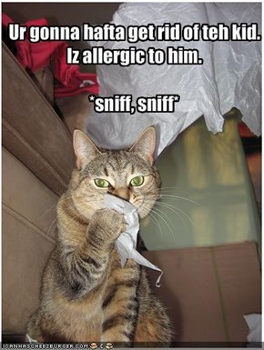 Ur gonna hafta get rid of teh kid. Iz allergic to him.