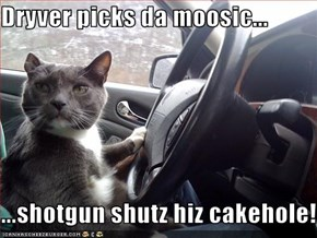 Dryver picks da moosic...  ...shotgun shutz hiz cakehole!