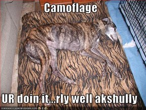 Camoflage  UR doin it...rly well akshully