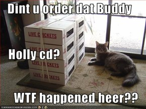 Dint u order dat Buddy    Holly cd? WTF happened heer??