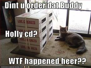 Dint u order dat Buddy    Holly cd? WTF happened heer??