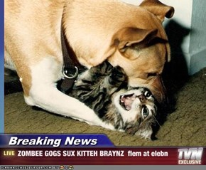 Breaking News - ZOMBEE GOGS SUX KITTEH BRAYNZ  flem at elebn