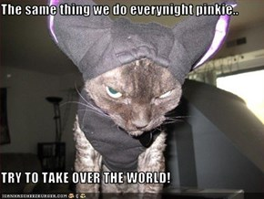 The same thing we do everynight pinkie..  TRY TO TAKE OVER THE WORLD!