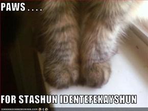 PAWS . . . .   FOR STASHUN IDENTEFEKAYSHUN