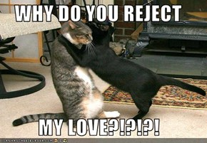 WHY DO YOU REJECT  MY LOVE?!?!?!