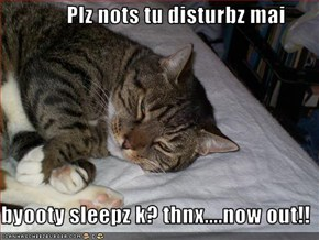 Plz nots tu disturbz mai  byooty sleepz k? thnx....now out!!