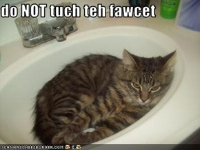 do NOT tuch teh fawcet