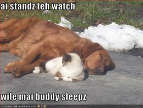 ai standz teh watch  wile mai buddy sleepz