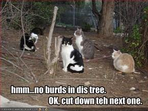 hmm...no burds in dis tree.                                               OK, cut down teh next one.