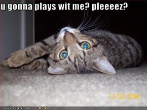 u gonna plays wit me? pleeeez?