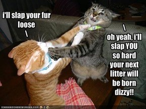 i'll slap your fur loose