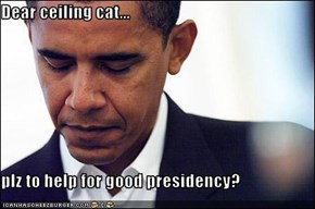 Dear ceiling cat...  plz to help for good presidency?